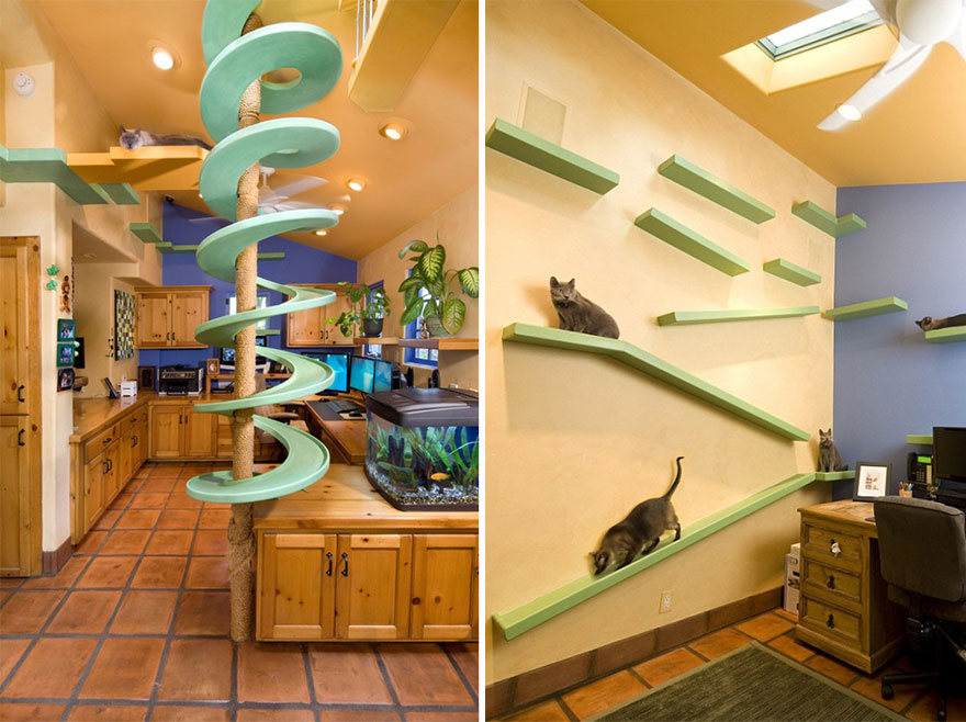 11.- Plataformas para gato