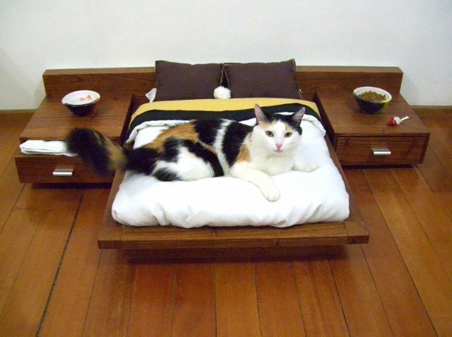 3.- Minicama para tu gato