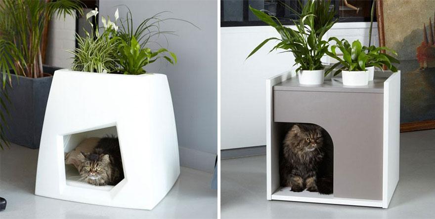 9.- Casa para gato y plantas