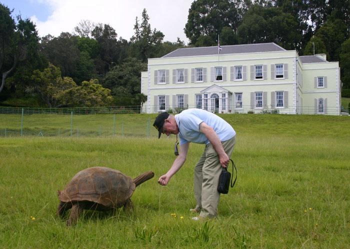 Jonathan la tortuga más vieja del mundo 7