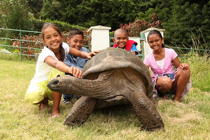 Jonathan la tortuga más vieja del mundo 9